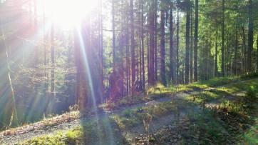 Wunderschönes Wetter und sehr friedlich.